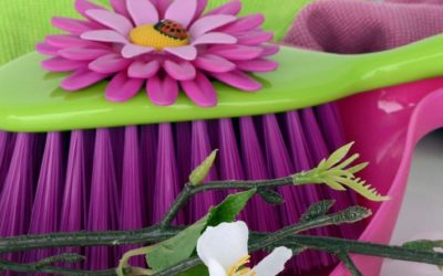Our Top Green Cleaning Tips